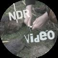 ndr_video_thumb_nutria_bedrohung_in_niedersachsen